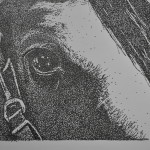 Janey's horse